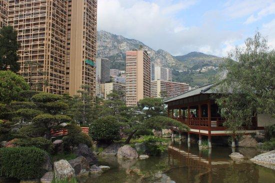 Japanese Gardens : Vue depuis le pont au sein du jardin.