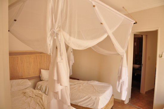 Halali Resort: Beds have customary mosquito net. Almost no mosquitos.