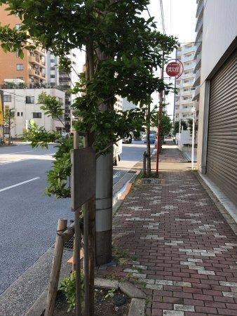 Yonekichi Matsukura Residence Site