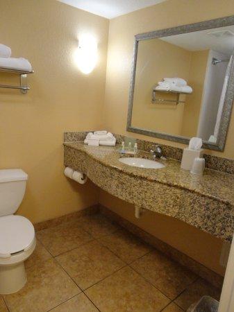 Bathroom picture of holiday inn hotel suites daytona for Premier bathrooms daytona beach fl