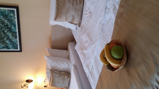 Hotel Srbija: 20170507_174255_large.jpg
