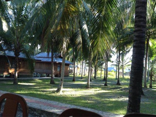 Ampana, Indonésie : photo0.jpg