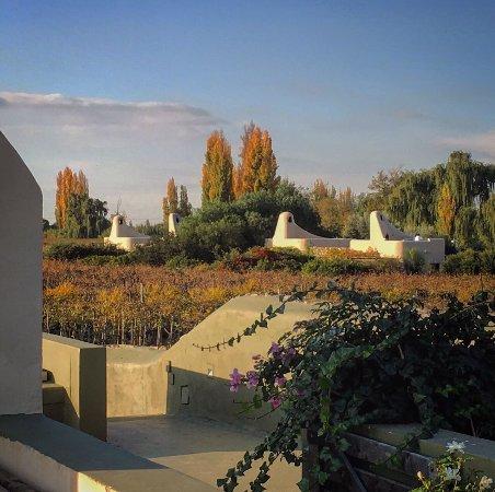 Cavas Wine Lodge: photo2.jpg