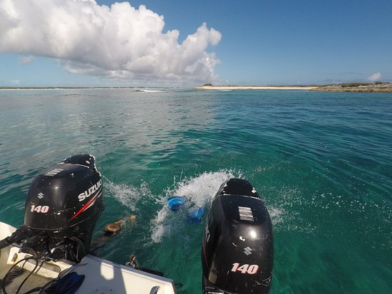 Out-Island Explorers Day Charters: Diving into our new fishing adventure