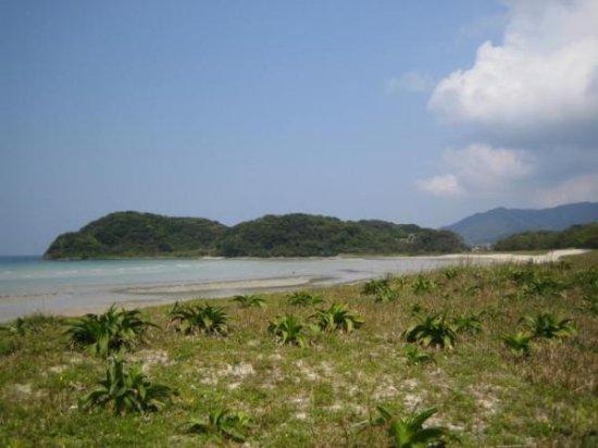 Shinkamigoto-cho-billede