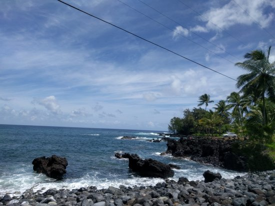 "Polynesian Adventure: Great cruise excursion ""Road to Hana"" with Kane Ala as driver"