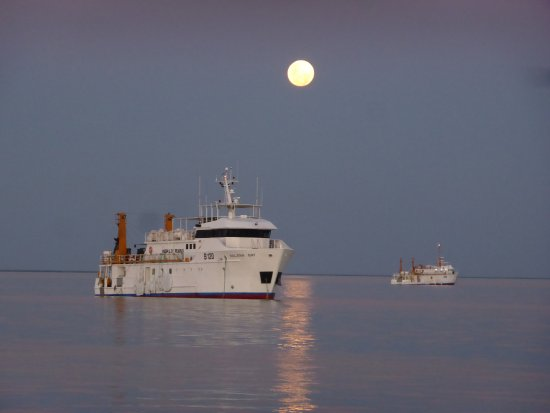 Broome Whale Watching: Moon rise on Roebuck Bay