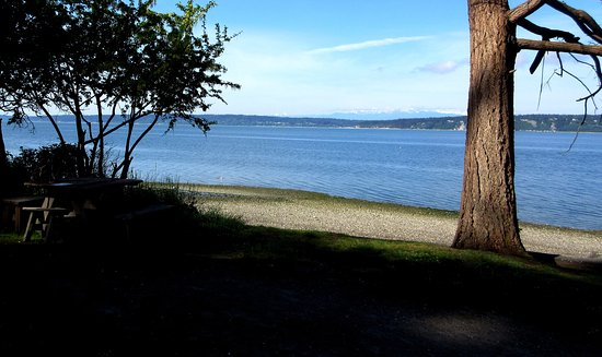 Camano Island, Waszyngton: View west from Cama Beach Cabin #38, towards Whidbey Island and the Olympic Mountains.