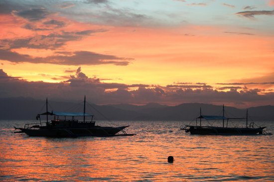 Marina Village Beach and Dive Resort: 50m walk to sea is spectacular for sunsets