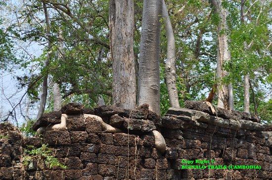 Banteay Meanchey Province, كامبوديا: B-Chmar7