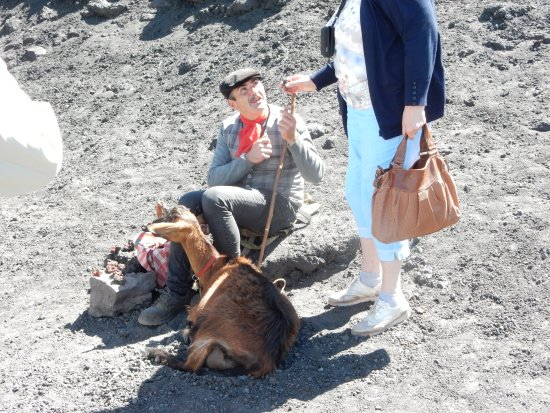 New Travel Services Day Trips: A goatherd on Mount Etna.