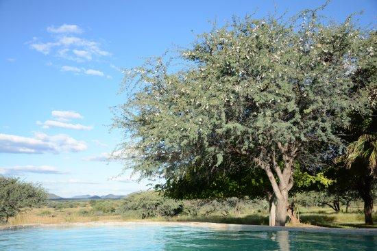 Foto de Tsumeb