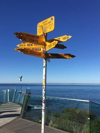 Bluff, Nova Zelândia: photo0.jpg