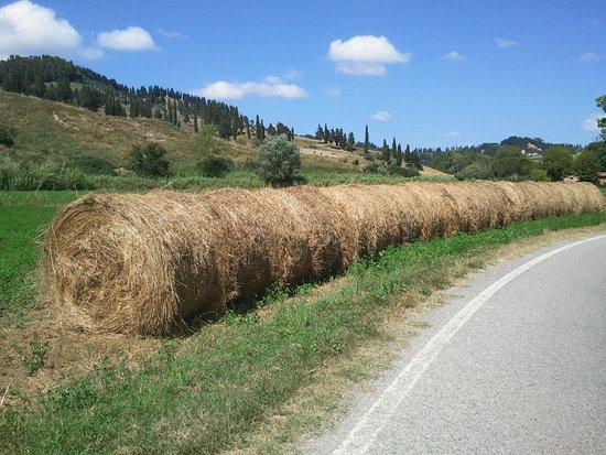 Печчоли, Италия: nei dintorni