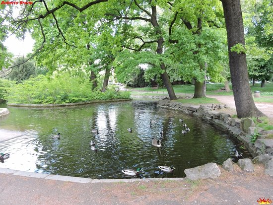 Laghetto picture of jardin d 39 acclimatation paris - Jardin d acclimatation bois de boulogne ...