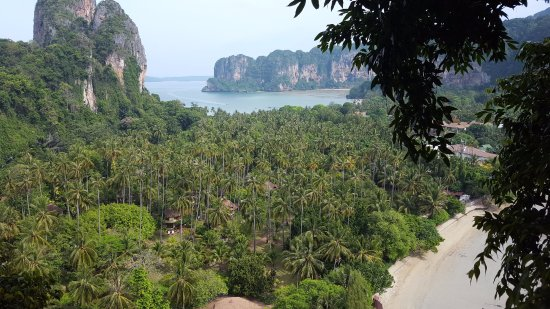 """View of how lush the resort is from the """"view point"""""""