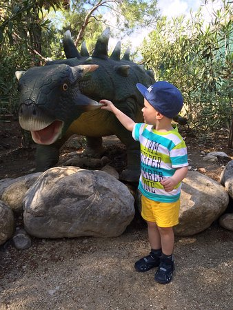 photo2.jpg - Picture of Dinopark, Goynuk - TripAdvisor
