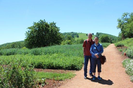 Charlottesville, VA: Gardens of Monticello
