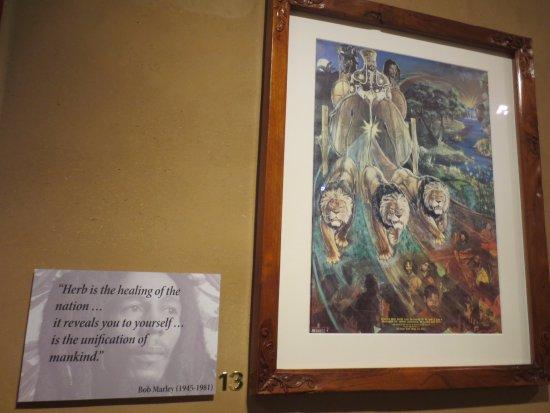 Hash Marihuana & Hemp Museum: Exposición cuadro