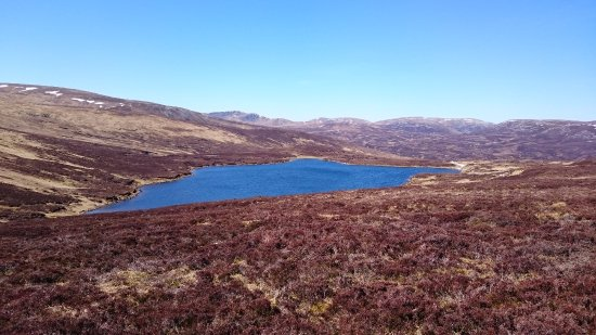 Aviemore and the Cairngorms, UK: Loch Vrotachan