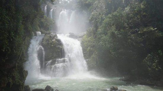 Imagen de Dominical