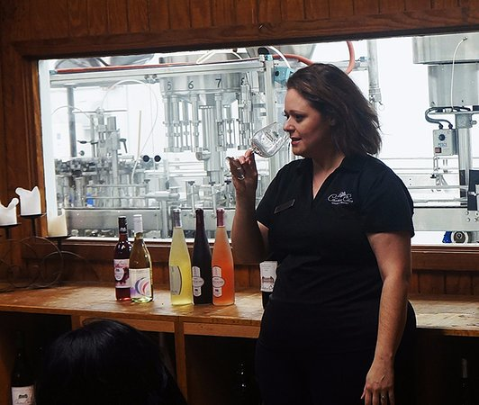 Braselton, GA: Wine tasting tour