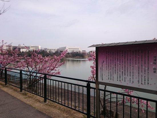 Futatsuike Park
