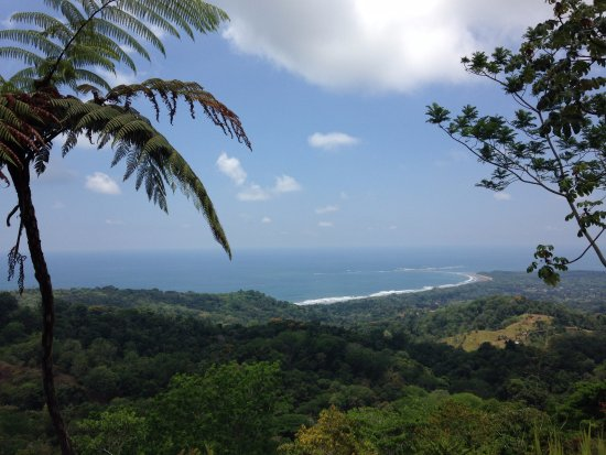 Dominical, Costa Rica: Beautiful Whale´s Tale view!