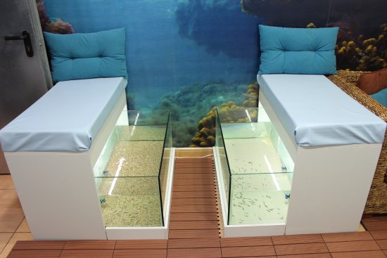 Massage By Fish Spa Canarias