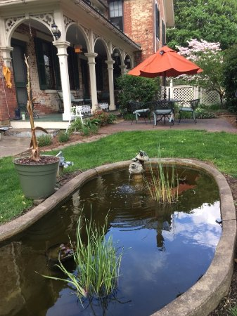 Wooster, OH: The Coy Pond