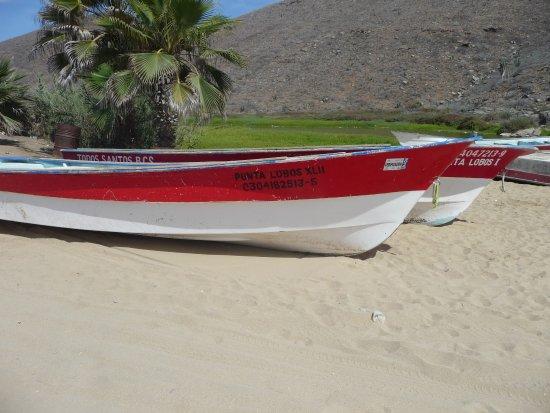 Punta Lobos: one of the many boats