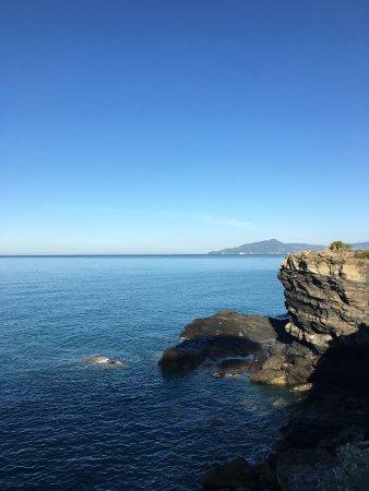 Hotel La Scogliera: La vista del monte di Portofino