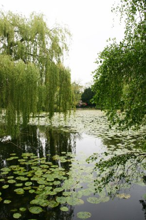 Tullow, Irlanda: Nearby attraction Altamont Gardens