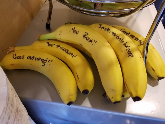 Hampton Inn Glenwood Springs: Happy banana messages