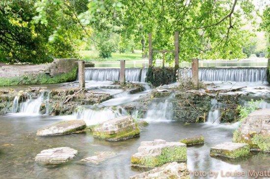 River, UK: photo2.jpg