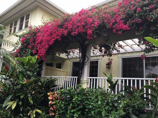 Pineapple Inn: back porch of the inn