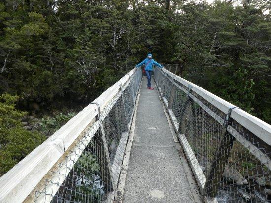Вакапапа-Виллидж, Новая Зеландия: camino