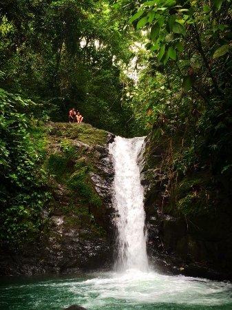 Playa Grande, Kosta Rika: Tour Zona Sur - Uvita Parque Nacional Marino Ballena