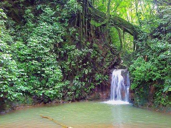 Tacacori EcoLodge: Waterfall Close by