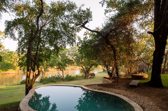 Balule Nature Reserve, Sydafrika: Swimming Pool with River view