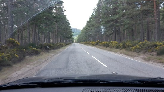 Авимор и Кэрнгормс, UK: Cairngorms Nat Park 5 (A93)