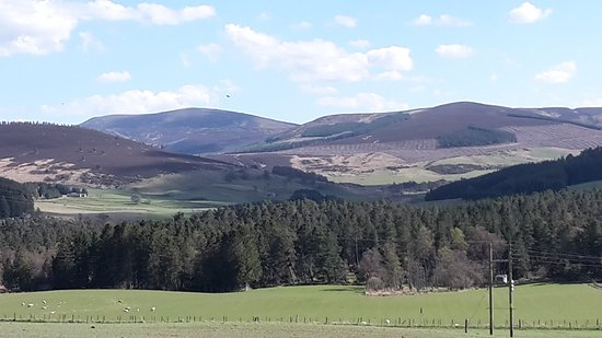 Badenoch and Strathspey, UK: Cairngorms Nat Park 11 (Strathdon)