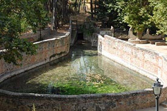 Centro Kalyana: Fuente Grande, Alfacar