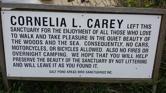 Cornelia Carey Sanctuary (The Knob): Carey Sanctuary