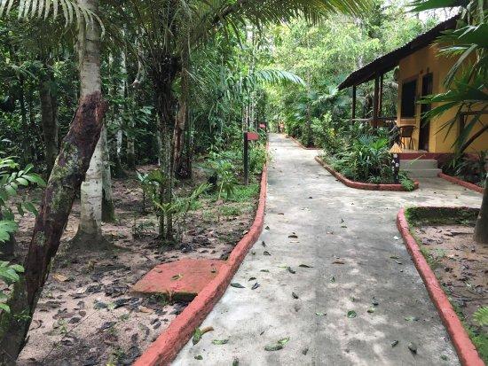 Amazon Ecopark Jungle Lodge: Beleza bucólica!