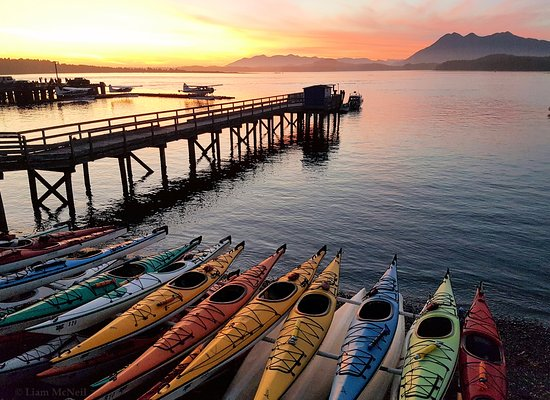 ‪Tofino Sea Kayaking Day Tours‬