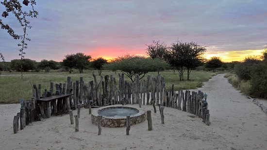 Central Kalahari Game Reserve Photo