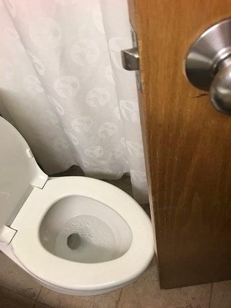 Urbana, IL: Door stop