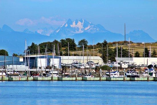 Oak Harbor, WA: From the dock