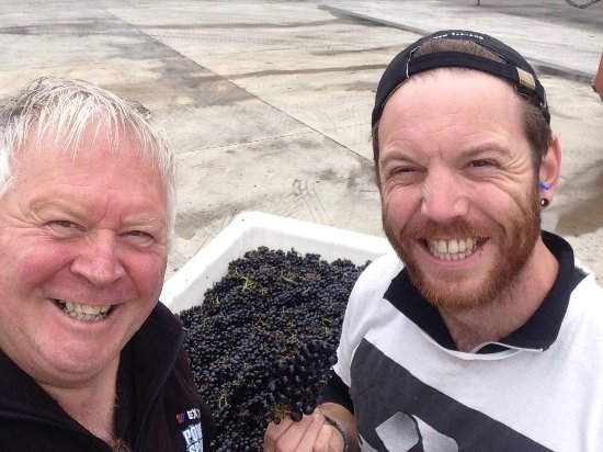 Renwick, Nueva Zelanda: Dave and Blair thrilled with the hand harvest ed Pinot Noir.